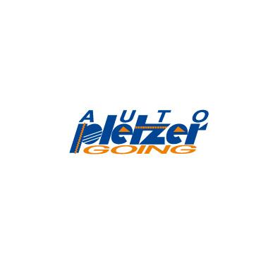 Logo Auto Pletzer Going
